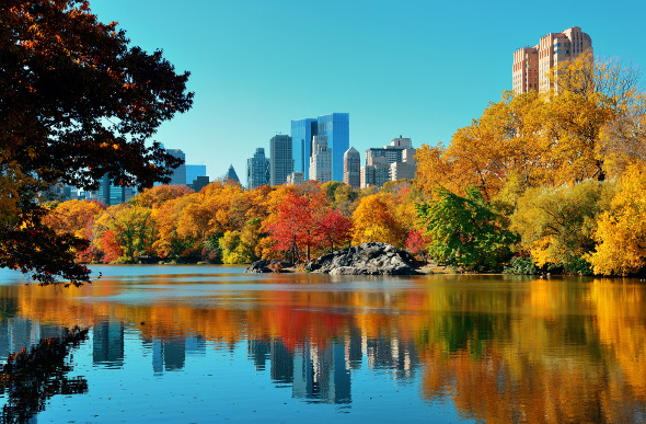 10 Best Green Spaces In New York