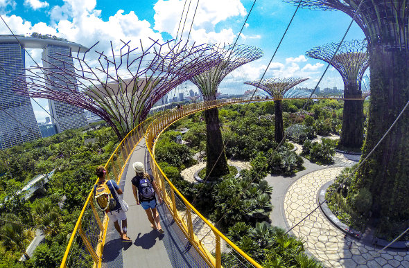 12 Must-Do Singapore Tours & Activities
