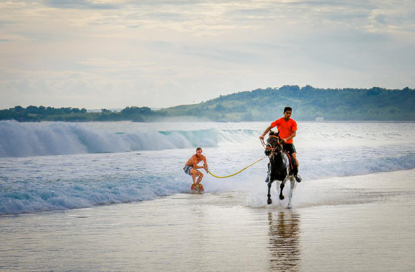 Horse and beach on Sumba