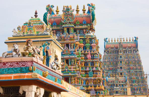 Tamil Nadu, India: In The Footsteps Of Linnaeus Tripe